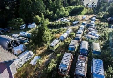 An Ontario Man is Selling 55 Volkswagen Buses and You Won't Believe the Price
